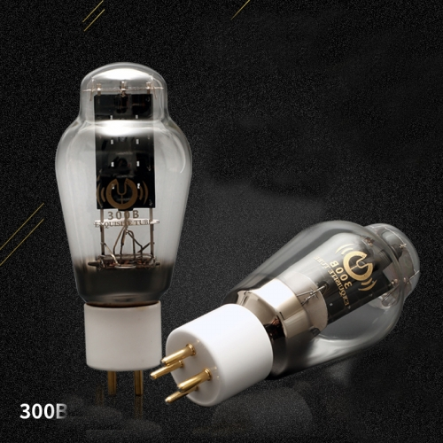 1PC New arrival HIFI Diy Audio tube AMP Vacuum tube 300B